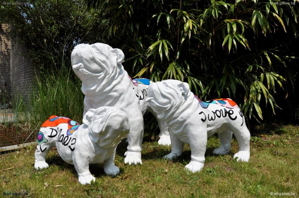 Hannes Dhaese Bulldog Anglais Vendre